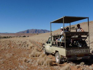 Vehicle-and-dune-drive-Ecki